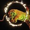 Цирки в Гидроторфе